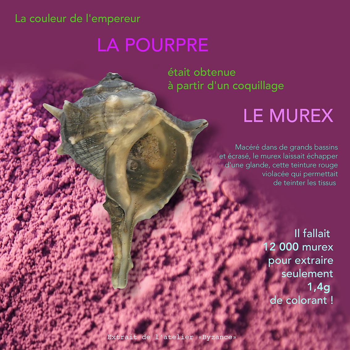 Pourpre (1)