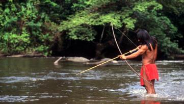 carnet de voyage au coeur de l'Amazonie
