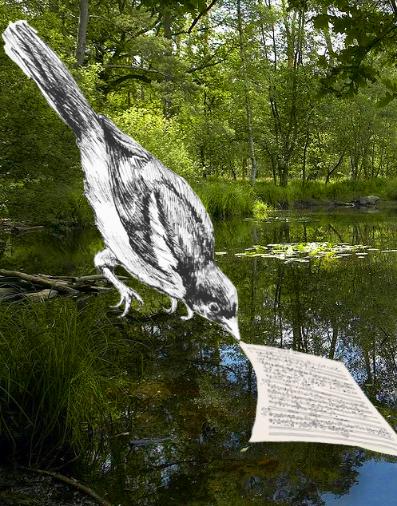 oiseaux voliere injs